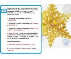 Cursuri de calificare avizate ISCIR