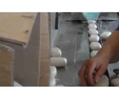 Angajez personal fabrica sapunuri Germania